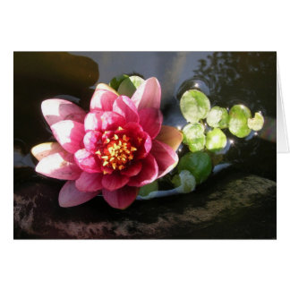 August Waterlily Thank You Note Card