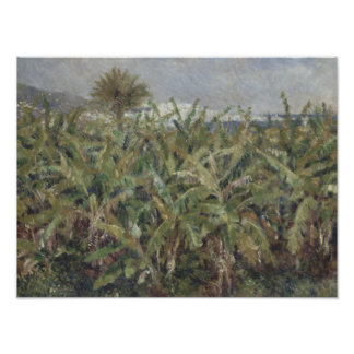 Auguste Renoir - campo de los árboles de plátano Fotografía