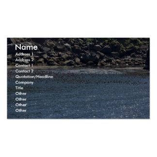 Auklet flock, Kasatochi Island Business Card