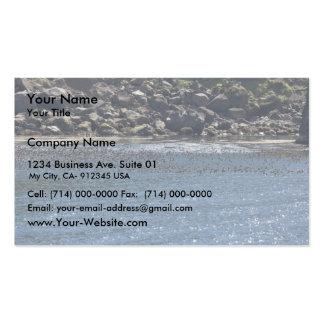 Auklet flock, Kasatochi Island Business Cards