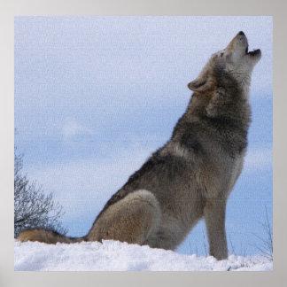 Aullido del lobo posters