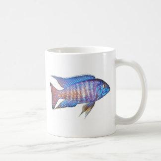 "Aulonocara sp. ""peacock"" classic white coffee mug"