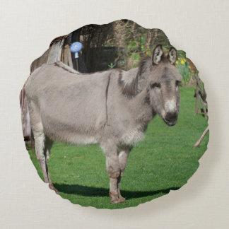 Aún vida rural con el burro cojín redondo