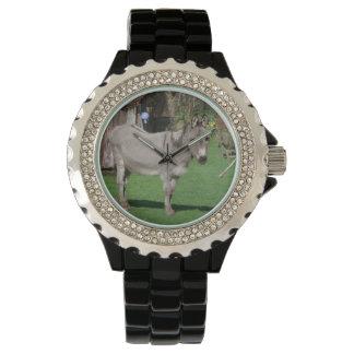 Aún vida rural con el burro reloj de mano