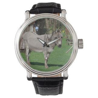 Aún vida rural con el burro relojes de mano