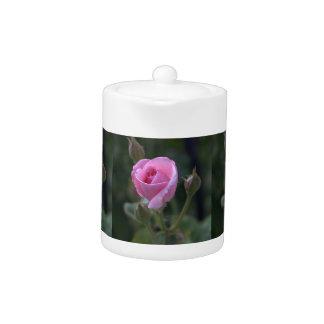 Aunt Dorothy's Pink Rose Teapot