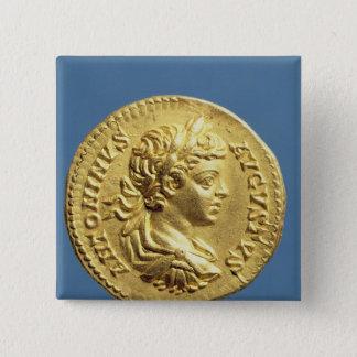 Aureus  with head of Carcalla  grapes Button
