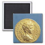 Aureus  with head of Carcalla  grapes 2 Inch Square Magnet