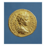 Aureus  with head of Carcalla  grapes Poster