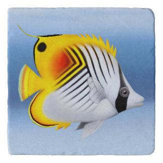 Auriga Thread find Butterfly Fish Stone Trivet