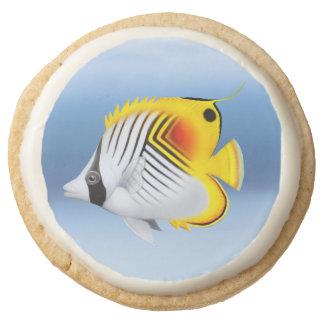 Auriga Threadfin Butterfly Fish Cookies