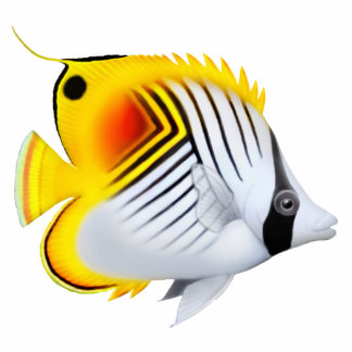Auriga Threadfin Butterfly Fish Pin Cutout