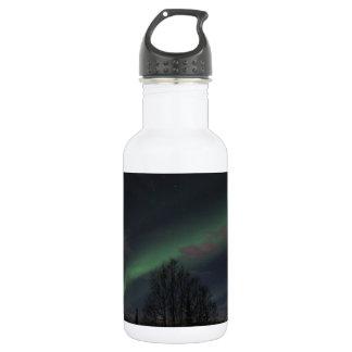 Aurora boreal en bosque boreal