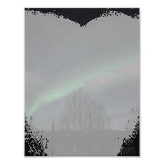 Aurora boreal en bosque boreal cojinete