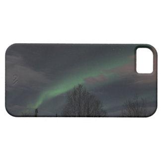 Aurora boreal en bosque boreal funda para iPhone SE/5/5s