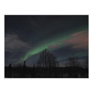 Aurora boreal en bosque boreal fotos