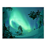 Aurora boreal en el invierno tarjetas postales
