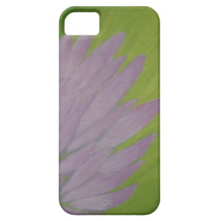 Aurora boreal iPhone 5 cobertura