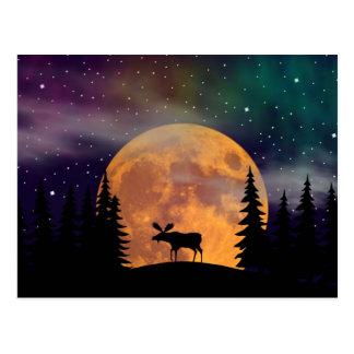 Aurora boreal septentrional de las noches postal