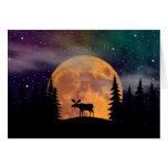 Aurora boreal septentrional de las noches felicitación