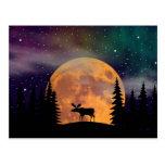 Aurora boreal septentrional de las noches tarjetas postales