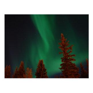 Aurora boreal sobre el pie Wainwright, AK Postal