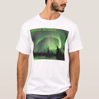 Aurora borealis 2 T-Shirt