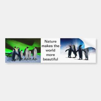 Aurora borealis and penguins bumper sticker