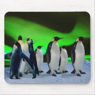 Aurora borealis and penguins mouse pad
