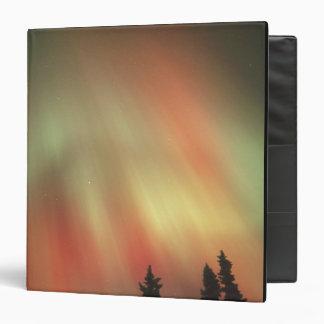 Aurora Borealis, aurora boreal, Fairbanks