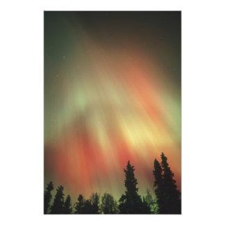 Aurora Borealis, aurora boreal, Fairbanks Fotografía
