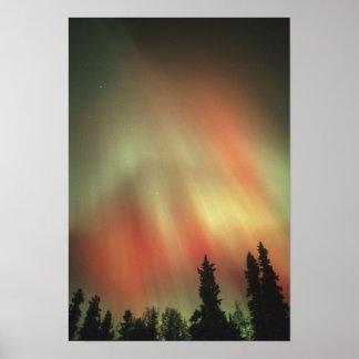 Aurora Borealis, aurora boreal, Fairbanks Impresiones