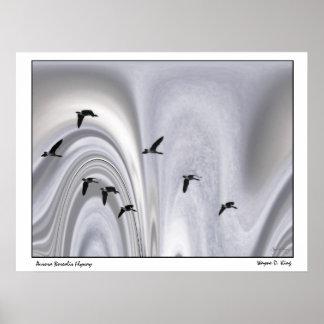 Aurora Borealis Flyway Poster