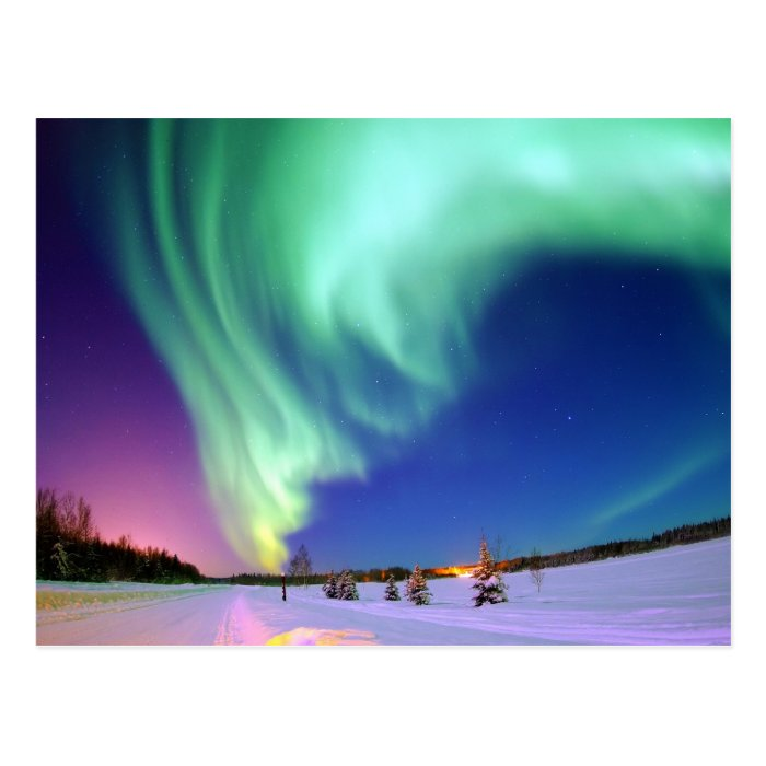 Aurora Borealis in Alaska Postcard