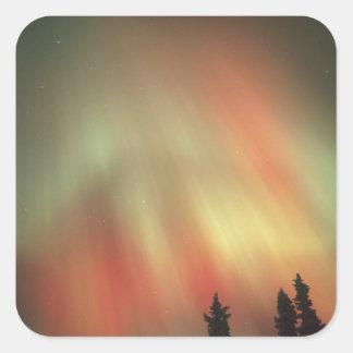 Aurora Borealis, Northern Lights, Fairbanks Square Sticker