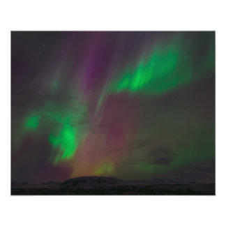 Aurora Borealis Northern Lights Trees Nature Lands Flyer