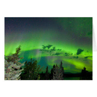 Aurora borealis over boreal forest card