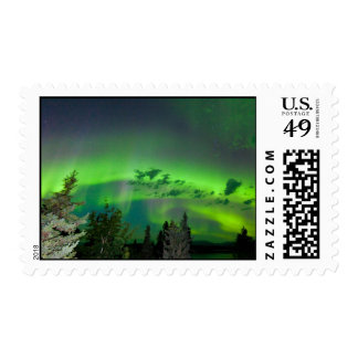 Aurora borealis over boreal forest postage stamp