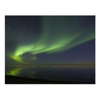 Aurora Borealis reflected in Arctic Ocean 2 Postcard