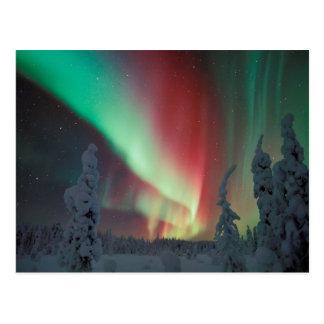 Aurora de Alaska Borealis Postales