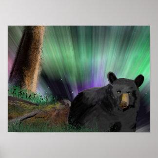 aurora del oso póster