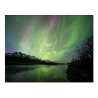 Aurora maravillosa postal