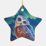 Aurora Starshine Owl. Double-Sided Star Ceramic Christmas Ornament