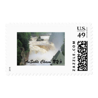 AuSable Chasm Postage Stamp