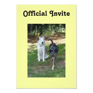 Ausky Dog and Catahoula Leopard Dog Friends Custom Invitation