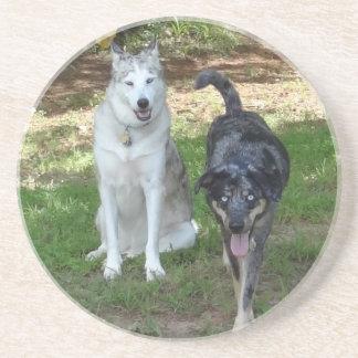 Ausky Dog and Catahoula Leopard Dog Friends Sandstone Coaster