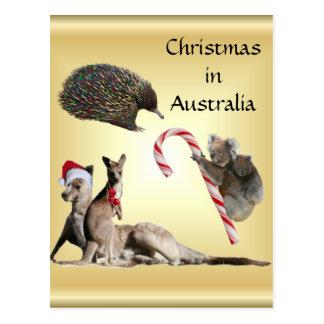 Aussie Animal Christmas Customisable Post Card