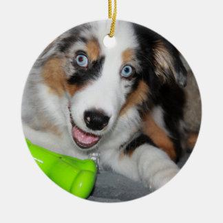 aussie blue merle puppy.png ceramic ornament