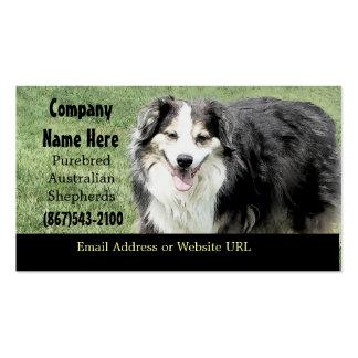 Aussie Breeder  Business Card