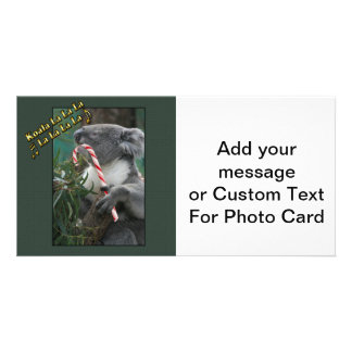 Aussie Christmas Koala with Candy Cane Photo Cards